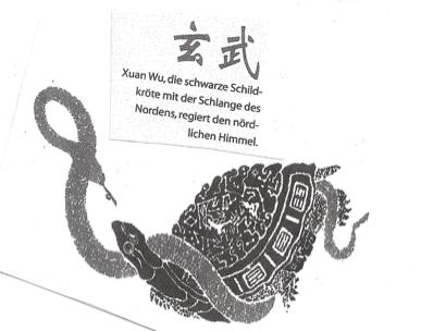Schlange Schildkröte, Quelle: Yürgen Oster TJQG-Journal Nr. 49